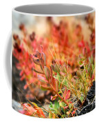 Forest Folaige Coffee Mug