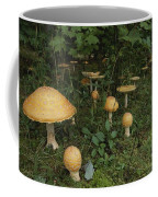 Forest Mushrooms Sprout Coffee Mug