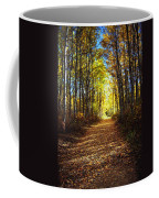 Forest Path In Autumn Coffee Mug