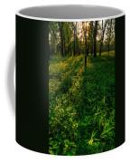Forest Sunset Coffee Mug by Steve Gadomski