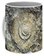 Fossil Geology Coffee Mug