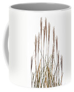 Fountain Grass In White Coffee Mug by Steve Gadomski