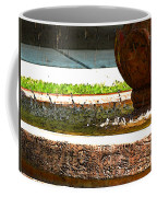 Fountain With Painted Effect Coffee Mug