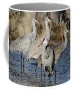 Four Sandhill Cranes Coffee Mug