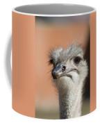 Fourth Quarter Letdown Coffee Mug