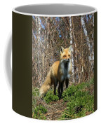 Fox And Birches Coffee Mug