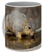 Fox Squirrel Coffee Mug