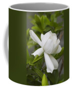 Fragrant White Gardenia Blossom Coffee Mug