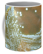 Francisella Tularensis Culture Coffee Mug