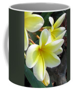 Frangipani Up Close Coffee Mug