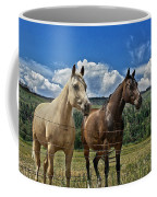 Freedom Riders Coffee Mug