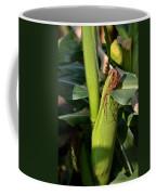 Fresh Corn On The Cob Coffee Mug