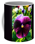 Fresh Face Pansy Coffee Mug