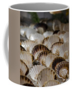 Fresh From The Sea Coffee Mug