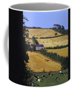 Friesian Cattle Coffee Mug