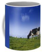 Friesian Cow Grazing In A Field Coffee Mug