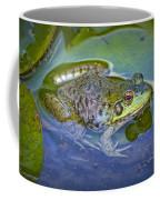 Frog Resting On A Lily Pad Coffee Mug