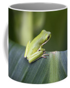 Froggie On A Leaf Coffee Mug