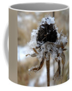 Frost And Snow On Dead Daisy Coffee Mug