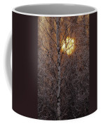 Frost-covered White Birch Trees Coffee Mug