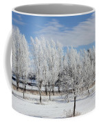 Frosted Coffee Mug