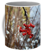 Frozen Mountain Ash Berries Coffee Mug
