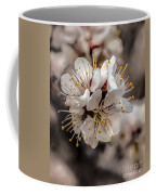 Fruit Bouquet Coffee Mug