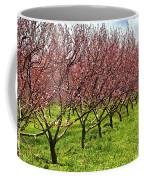 Fruit Orchard Coffee Mug by Elena Elisseeva