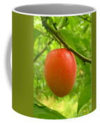 Fruit Plums Red Coffee Mug