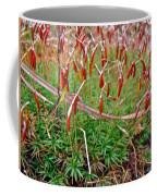 Fruiting Moss - Red And Green Tableau Coffee Mug