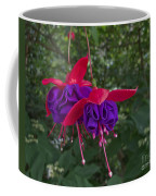 Fuchsia Flower Coffee Mug