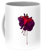 Fuchsia On White Coffee Mug by Dawn OConnor