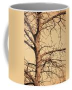 Full Of Potential Coffee Mug