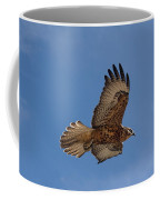 Galapagos Hawk Flying Coffee Mug