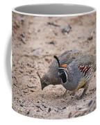 Gambels Quail Pair Coffee Mug