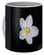 Garden Jewel And Rain Coffee Mug