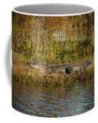 Gator Break Coffee Mug