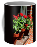 Geraniums In Germany Coffee Mug by Carol Groenen