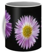 Gerber Dasies Coffee Mug