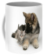 German Shepherd Dog Pup With A Tabby Coffee Mug