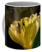 Ghosted Frecia Coffee Mug