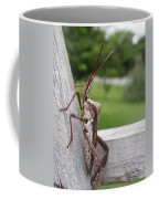 Giant Assassin Bug Coffee Mug