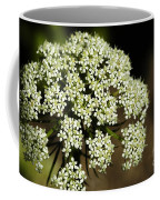 Giant Buckwheat Flower Coffee Mug