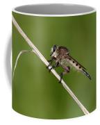 Giant Robber Fly - Promachus Hinei Coffee Mug