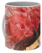 Giant Swallowtail - 3 Coffee Mug
