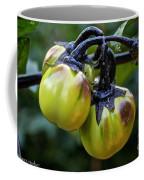 Gilo Black Stem Coffee Mug