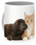 Ginger Kitten And Toy Poodle Coffee Mug