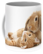 Ginger Kitten Lying With Sandy Lionhead Coffee Mug