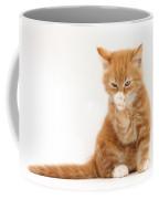Ginger Kitten Coffee Mug