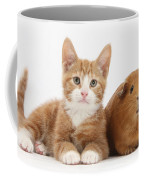 Ginger Kitten With Red Guinea Pig Coffee Mug